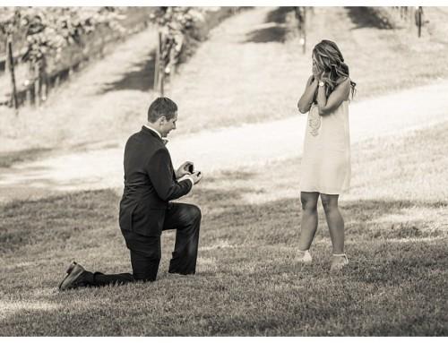 Surprise Proposal at Yonah Mountain Vineyards