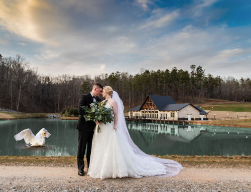 Swan Lake Overlook – A Very Exciting, New Wedding Venue In North Georgia