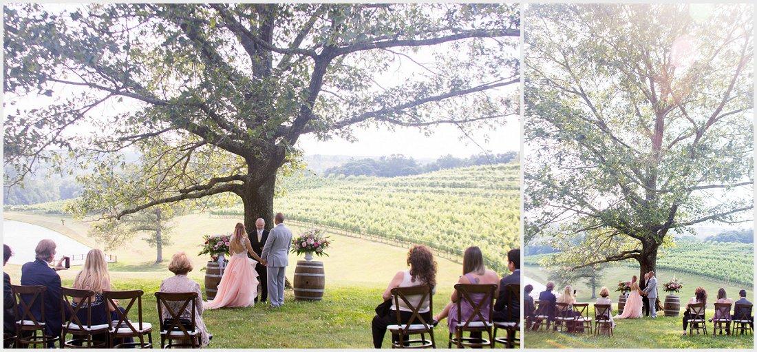 vineyard-wedding-pictures_0004